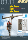 Ausgabe 03/2013