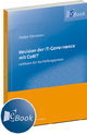 Revision der IT-Governance mit CoBiT