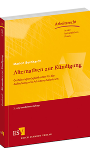 Alternativen zur Kündigung