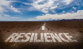 Resilienz in der Arbeits- und Organisationssoziologie