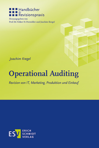 eBook Operational Auditing