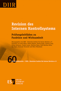 eBook Revision des Internen Kontrollsystems